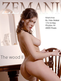 The wood 2